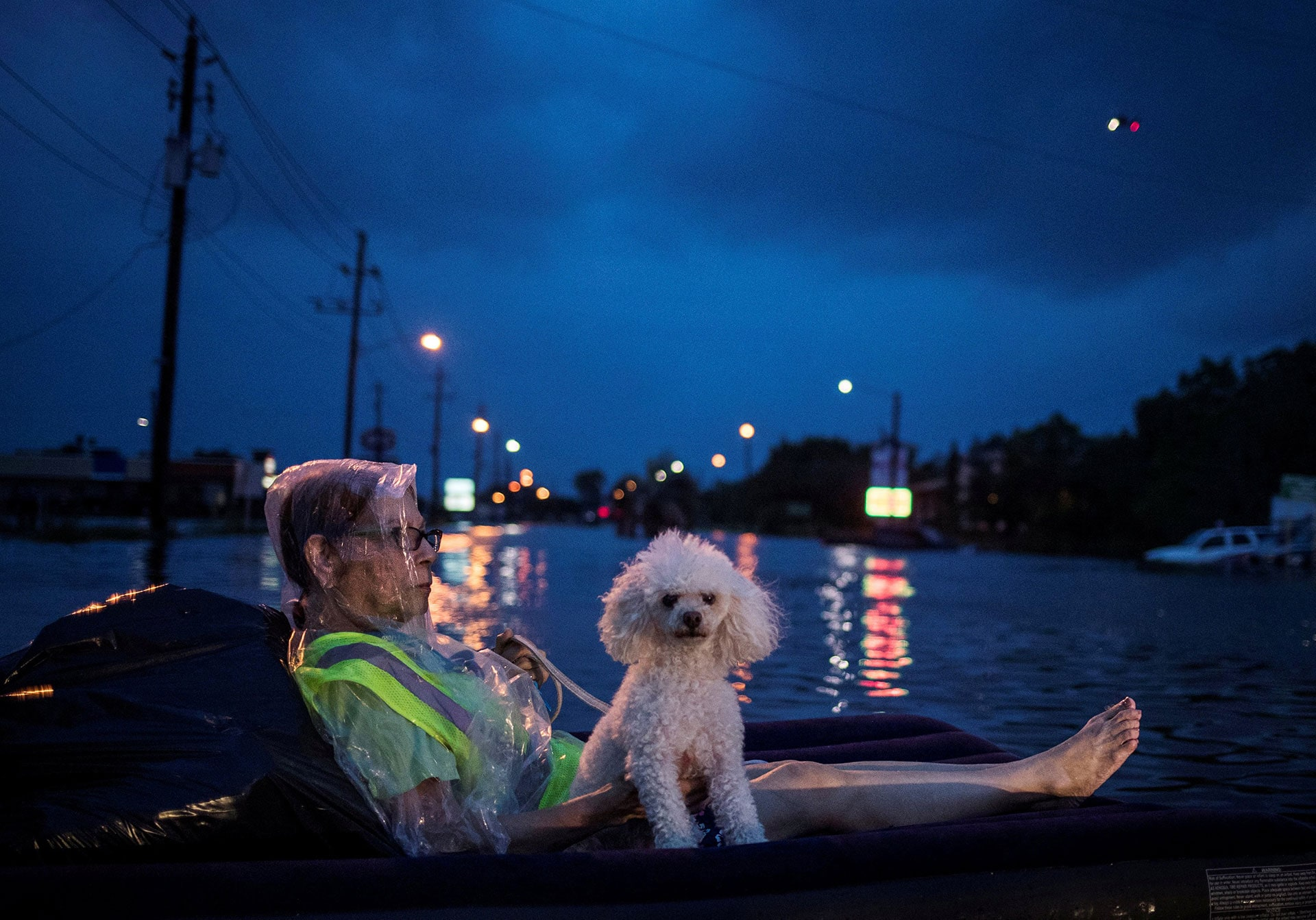A woman and her poodle wait to be rescued while floating on an air mattress