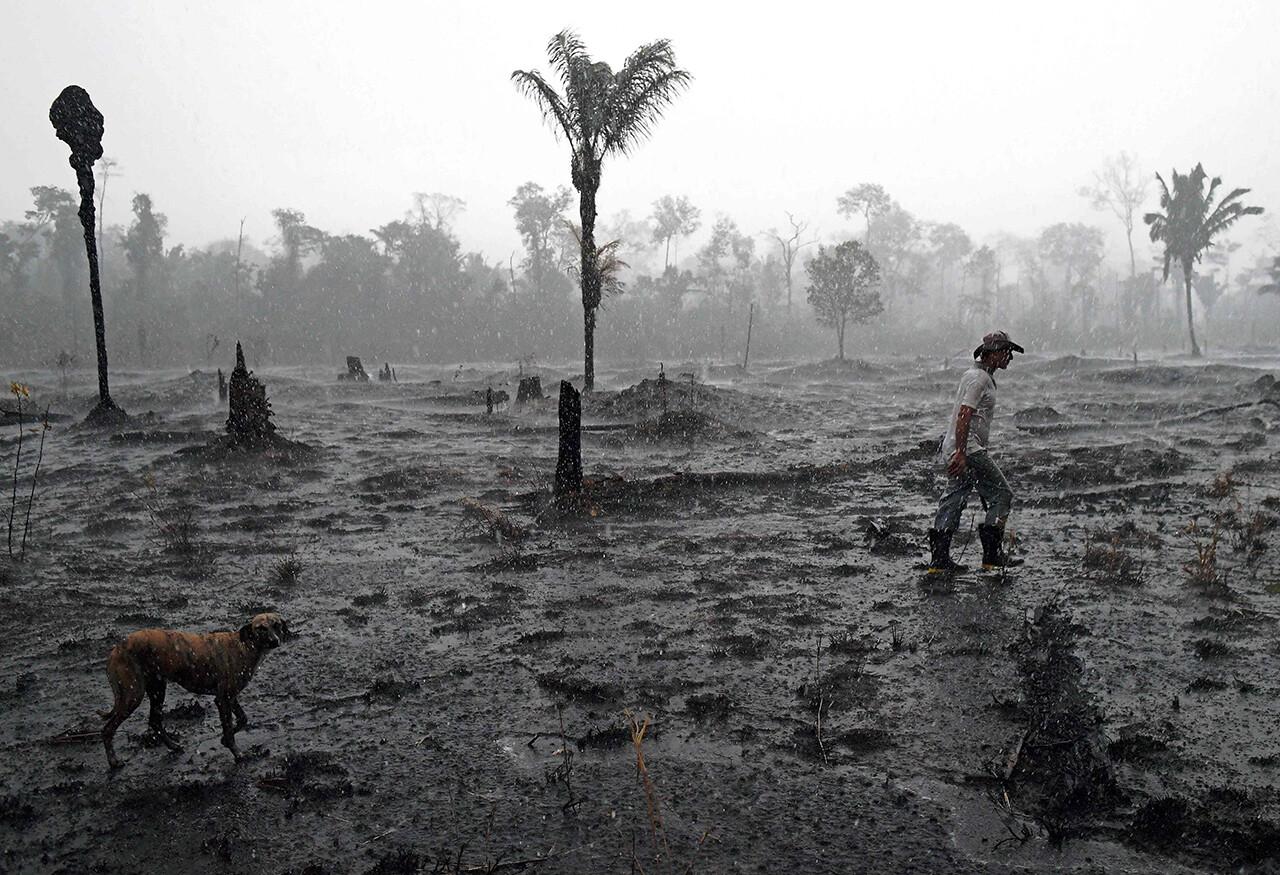 Farmer Helio Lombardo Do Santos walks through a burned area of the Amazon rainforest, near Porto Velho, Brazil.